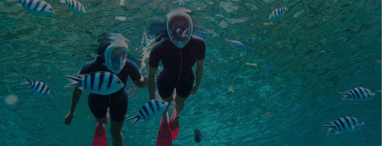 ee682c931af76 Mergulho e Snorkeling   Decathlon